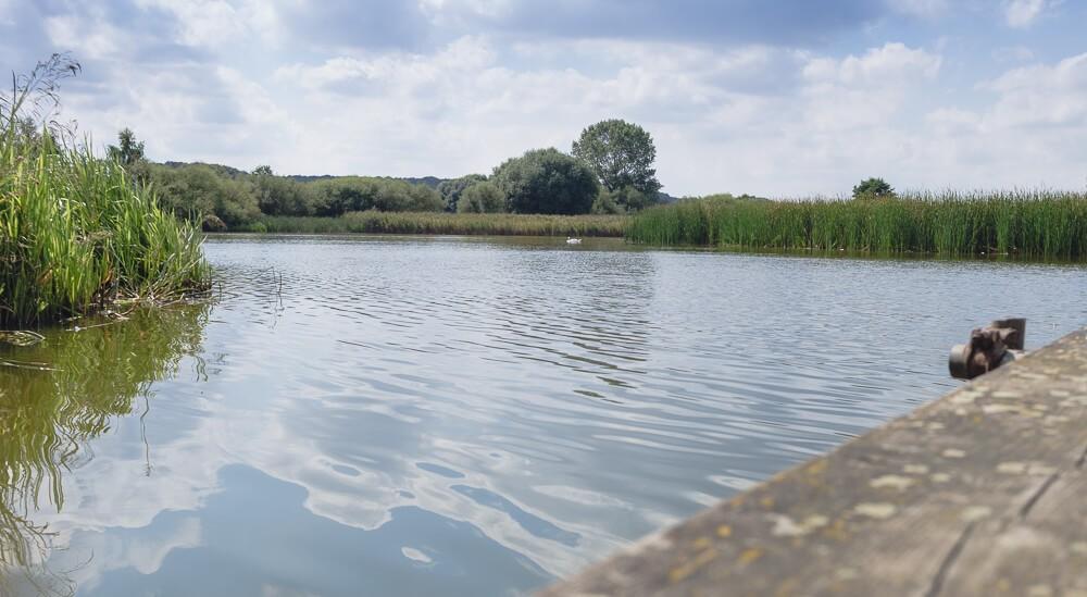Der Teich, an dem wir ein Päuschen eingelegt haben