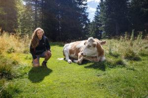Nicki neben einer Kuh