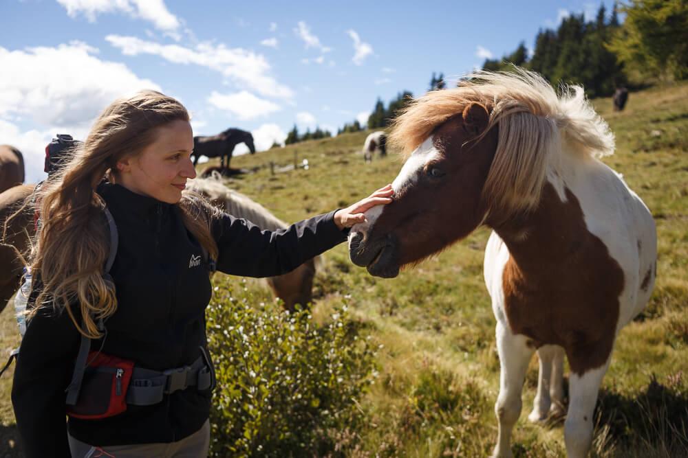Nicki streichelt Pferd
