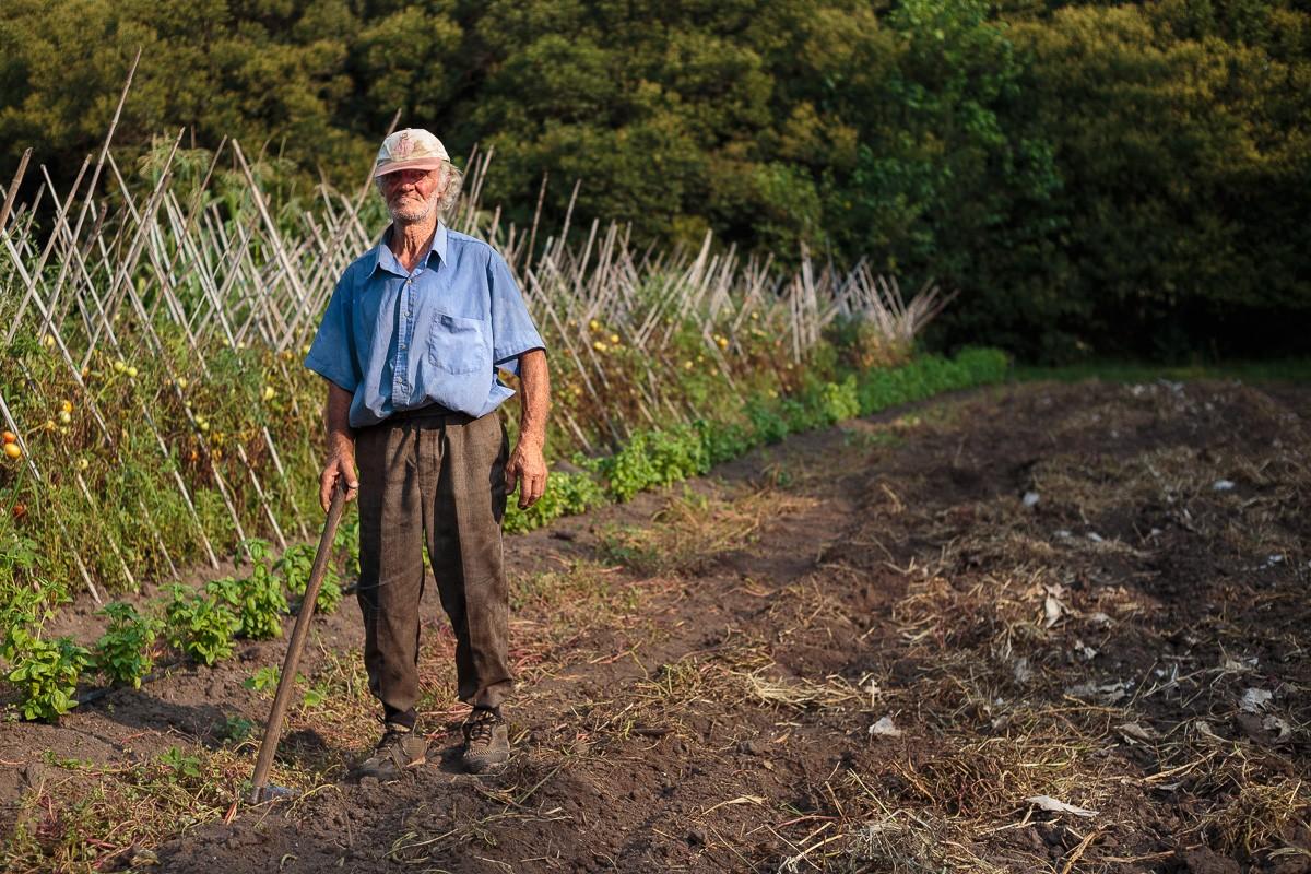 Ein alter Mann auf dem Feld